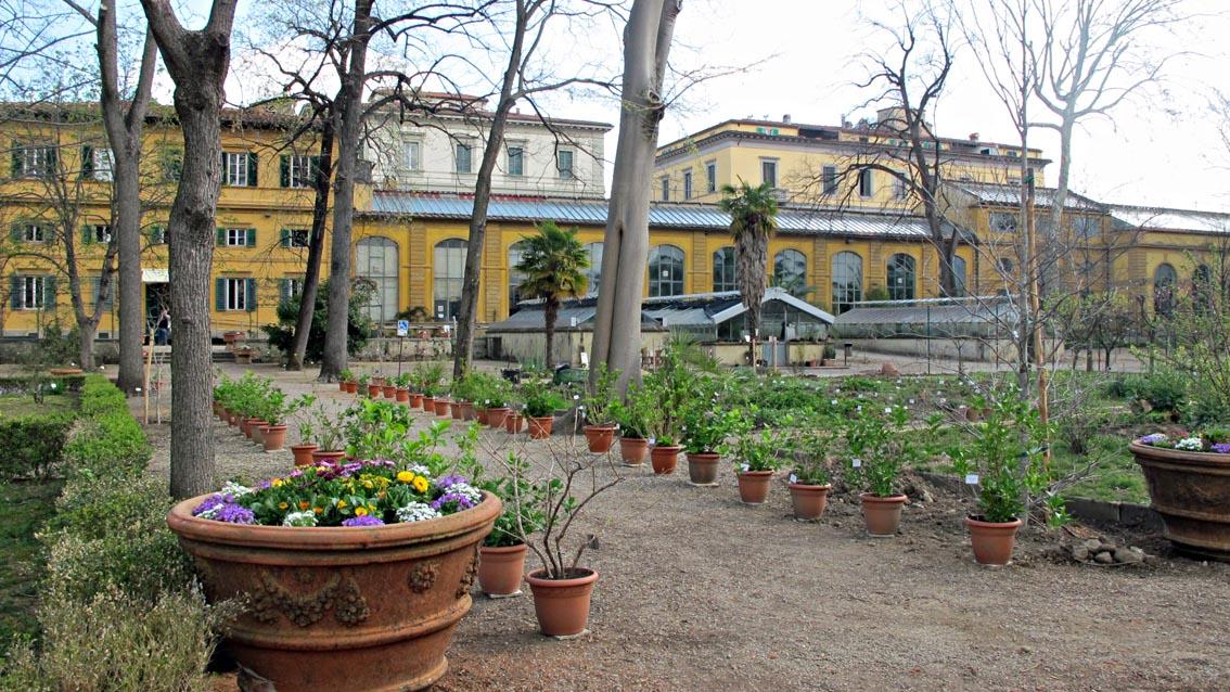 Grandine su firenze danni all orto botanico di firenze